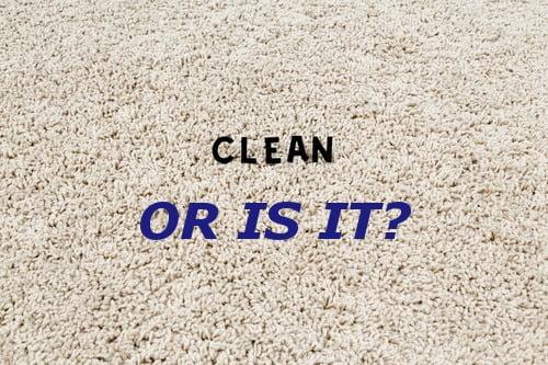 Carpet clening raleigh